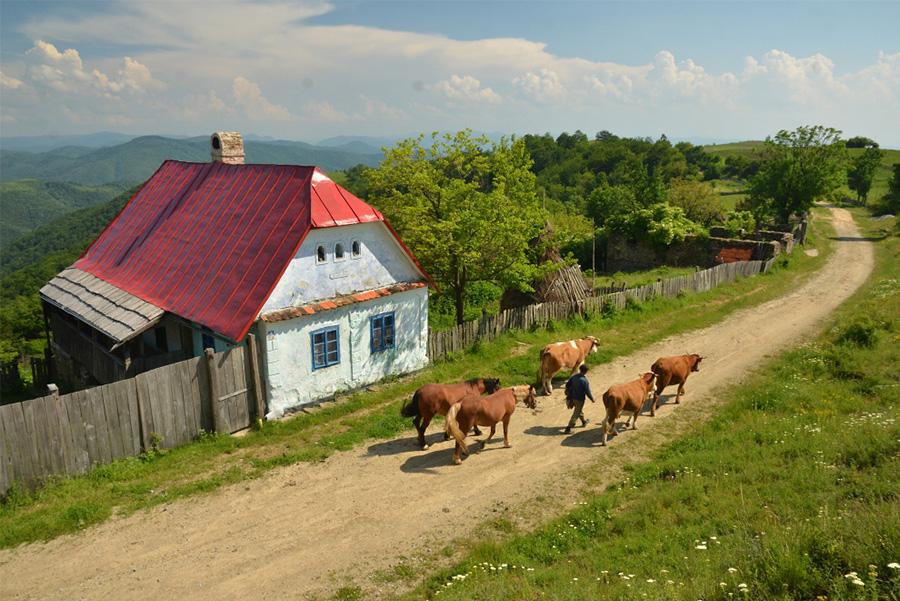 Banát - česká vesnice v Rumunsku